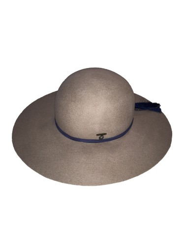 Taupe color floppy hat